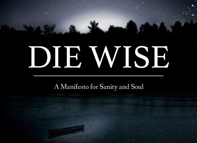 die wise a manifesto for sanity and soul orphan wisdom
