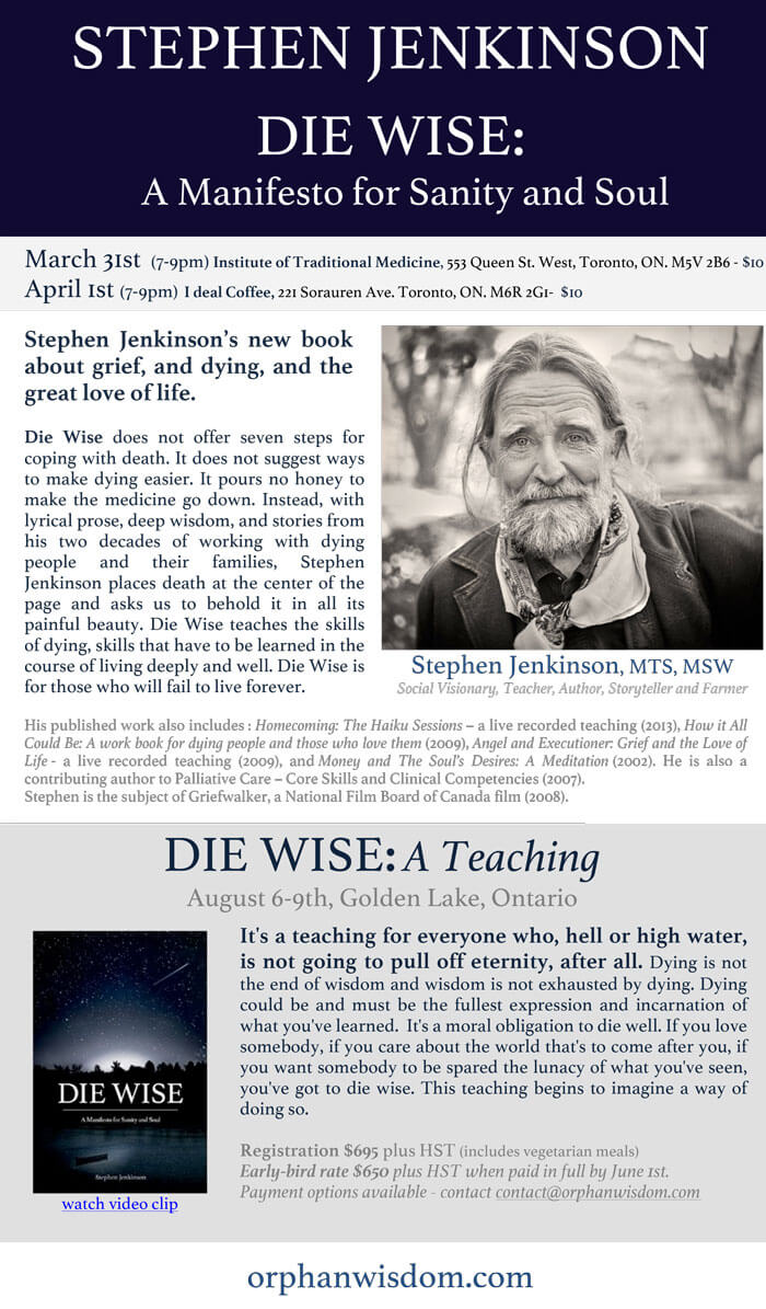 2015-03-31_04-01 TORONTO DIE WISE evening_book readings_nrdr3