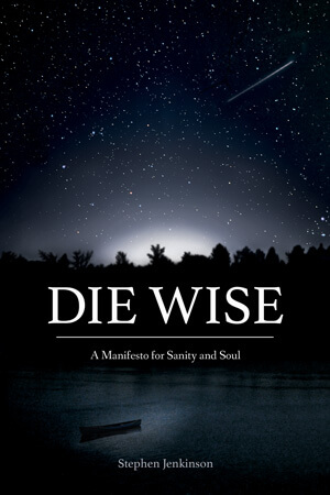 Die Wise - Book Cover